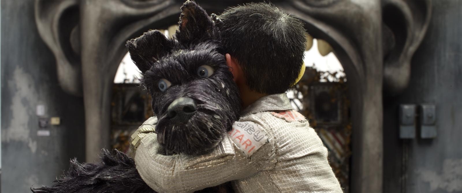 Köpek Adası Film Konusu