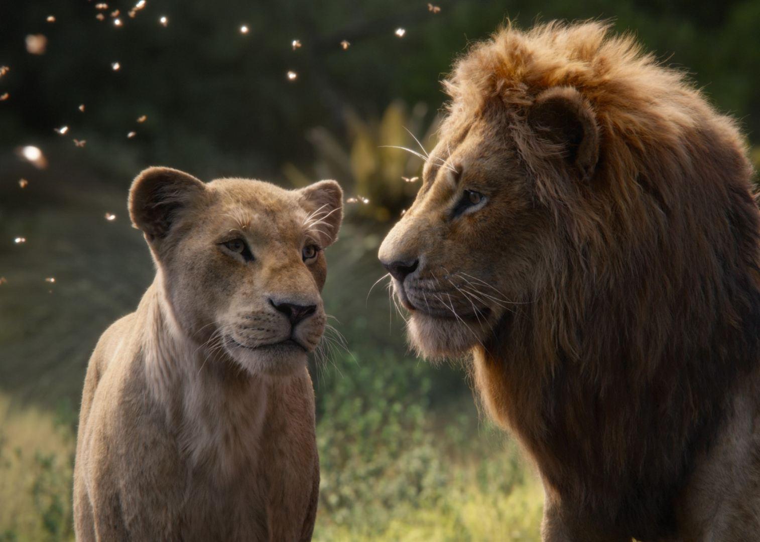 Aslan Kral Film Konusu